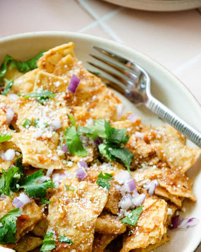 close up of tortilla chips with red salsa topped with cilantro, red onions and cotija cheese