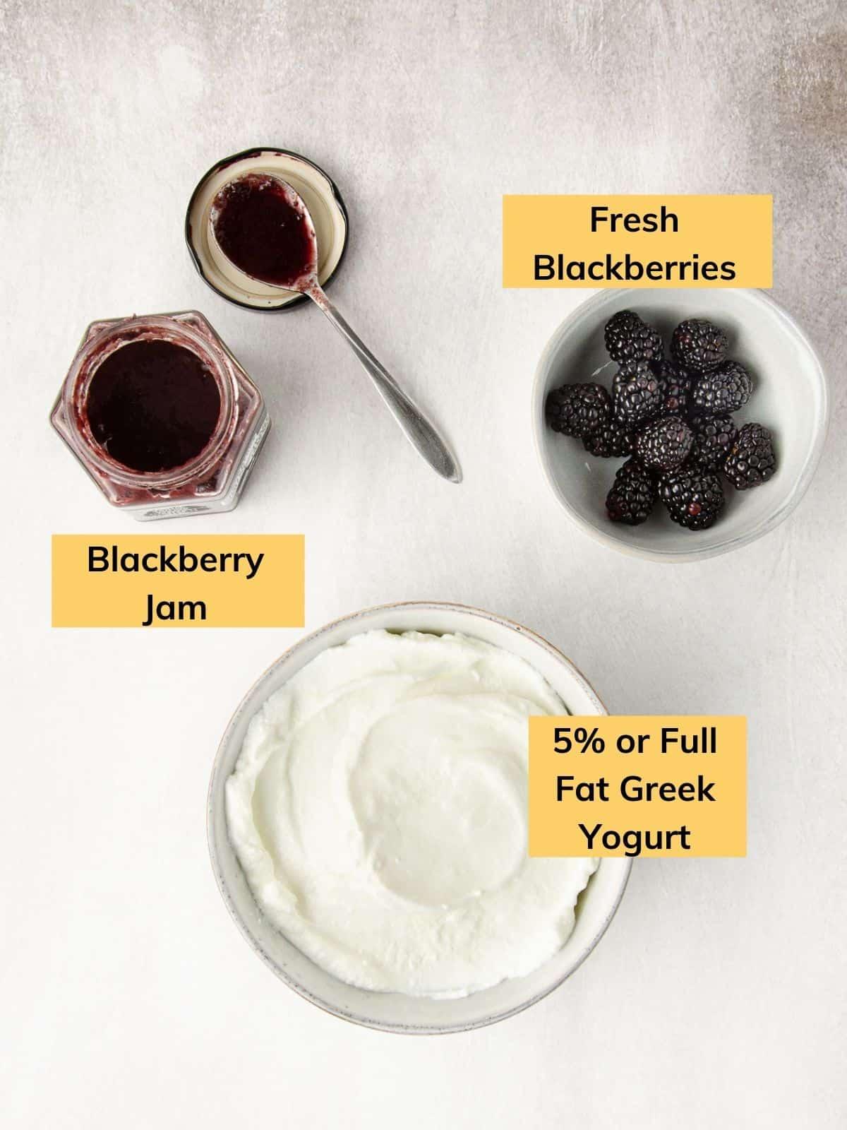 ingredients for three ingredient blackberry popsicles